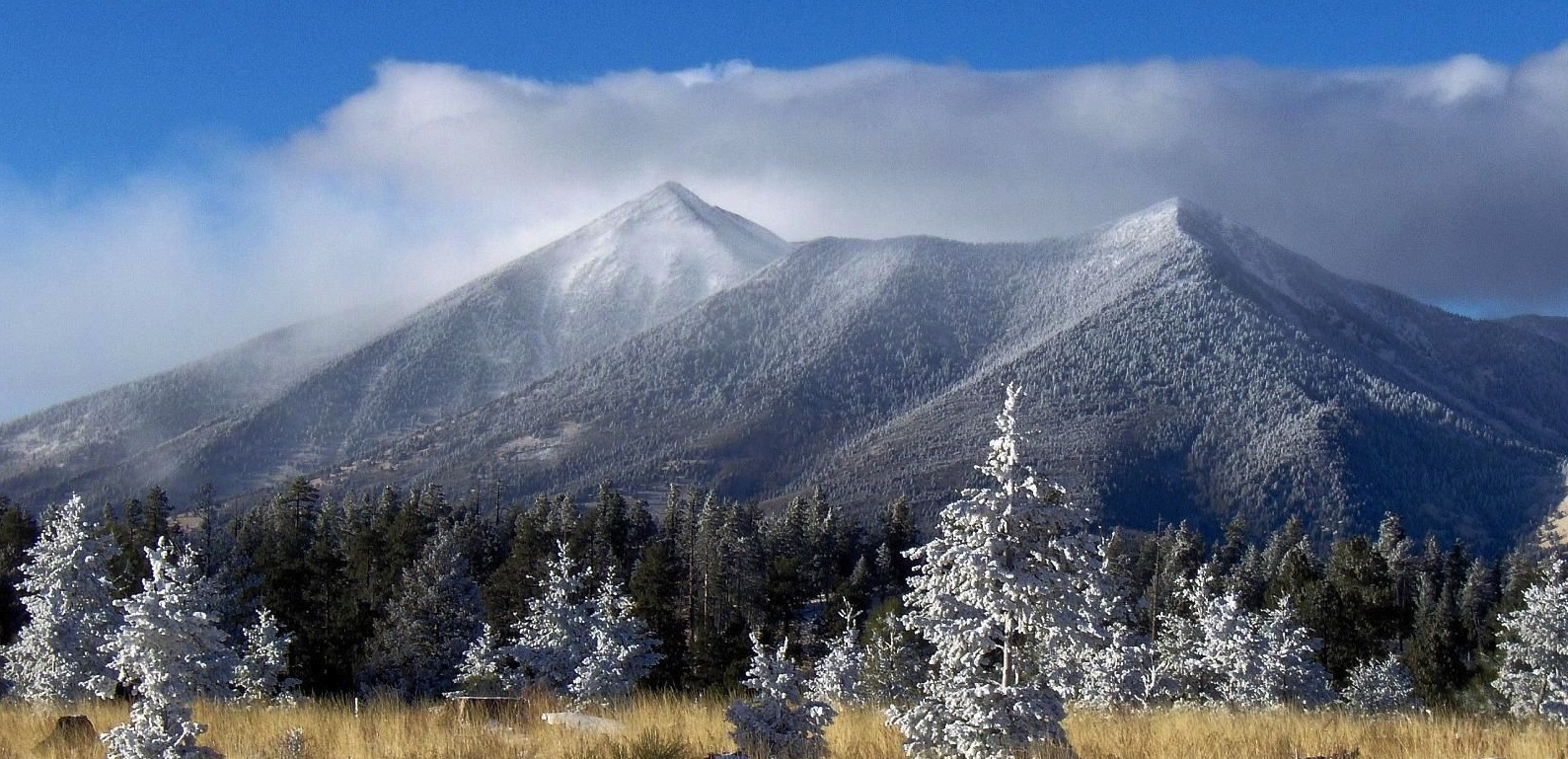 Flagstaff SF Peaks by Tyler Finvold